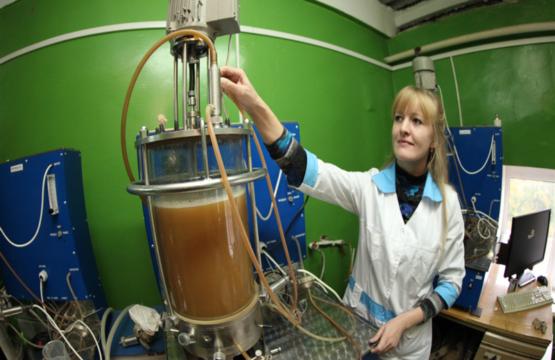 6-Выращивание иенакулята для засева ферментера